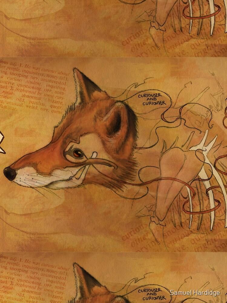 Curious Mr.Fox by 48Tuesdays