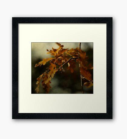 Lasting Impressions Framed Print