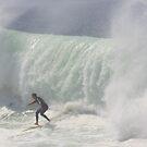 surfs up !! by Trish Threlfall
