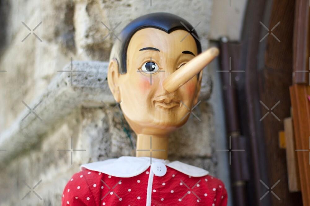 Pinocchio by Raquel Fletcher