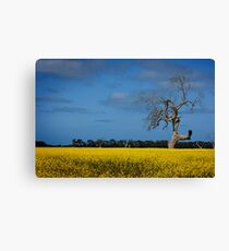 A Yellow Death Canvas Print