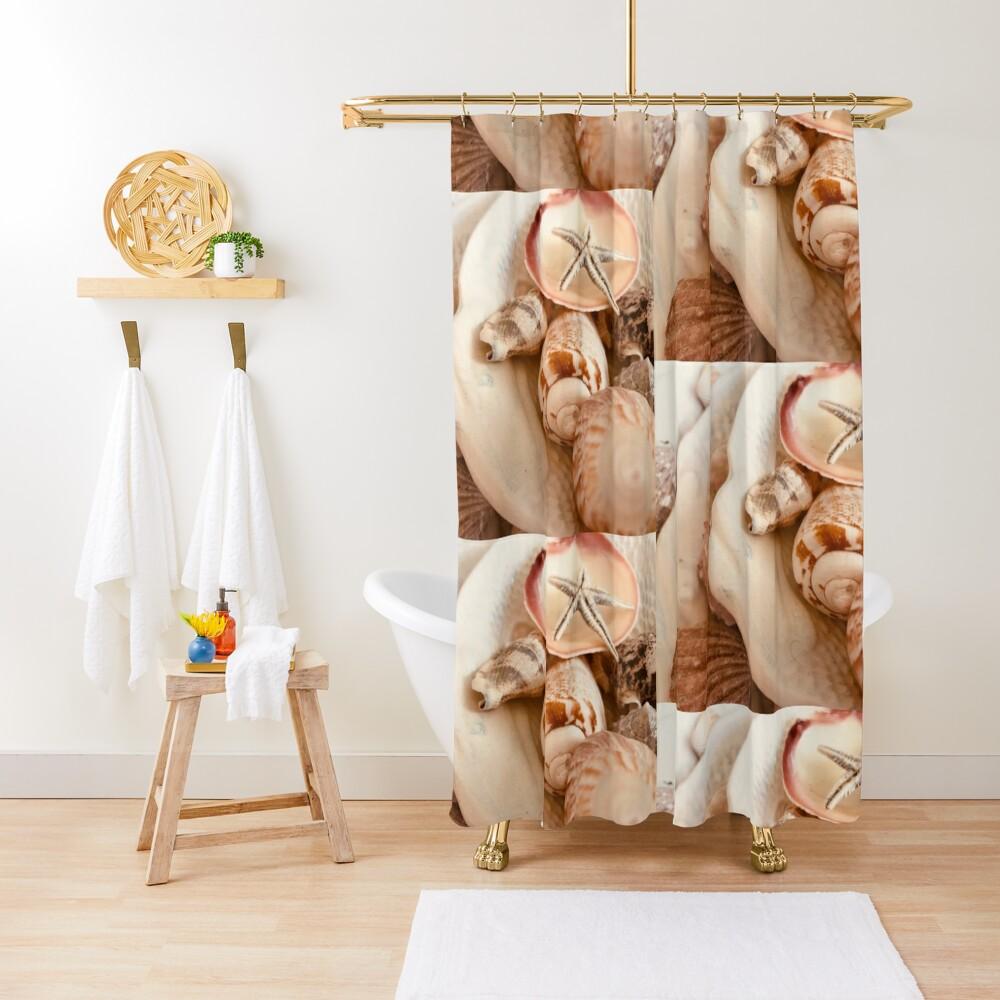 Kent's Shells Shower Curtain