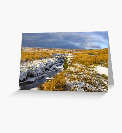 Birkdale Beck Greeting Card