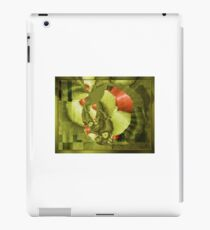 Aug15 Fractal Mapping iPad Case/Skin