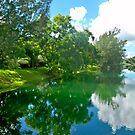 Miller Lake by nancy dixon