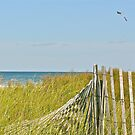 A Kite Flys Over the Sand Doons - Narragansett - RI - US by Jack McCabe
