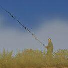 Fishing in River Raut by Kasia Nowak