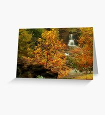 Reedy River Falls in the Fall Greeting Card