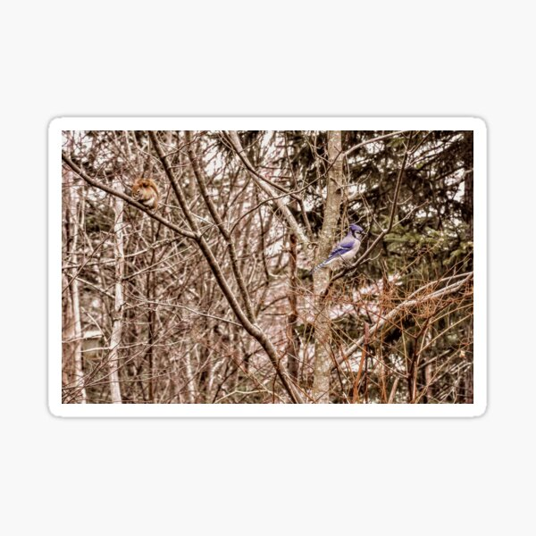 EQUILIBRIUM  By Yannis Lobaina  Sticker