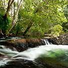 Wallaby Creek Waterfall pool, Home Rule,FNQ by Susan Kelly