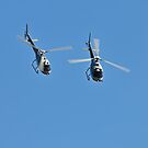 Duet of Helicopters, Up Close! by bazcelt