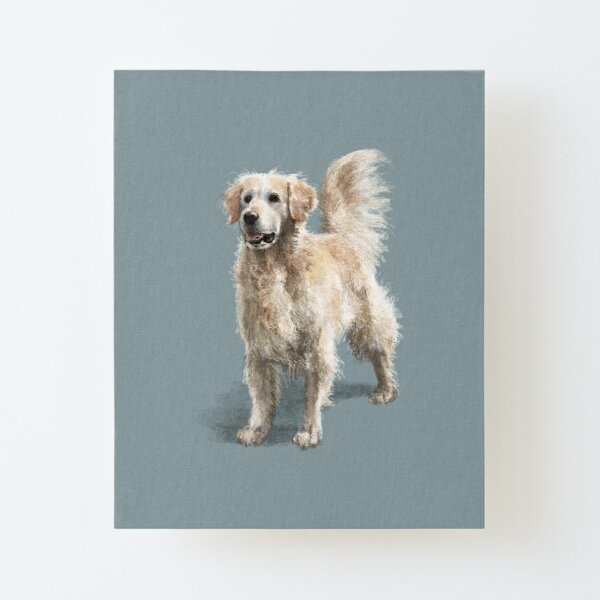 Cully Bear the Golden Retriever Canvas Mounted Print