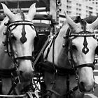Two horses in the city by Gaspar Avila
