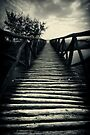 Love is the Bridge by Vikram Franklin