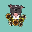 Happy Staffy with Sunflowers by Holly Wells . Sweet Illustrations