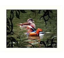 A pair of mandarin ducks Art Print