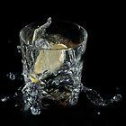 Splish Splash Splosh by Alan McMorris