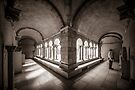 Exploring Cloisters II by Ray Warren