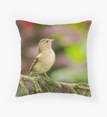 Chaffinch on Pine Throw Pillow
