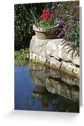 Garden Reflection by Samantha Higgs