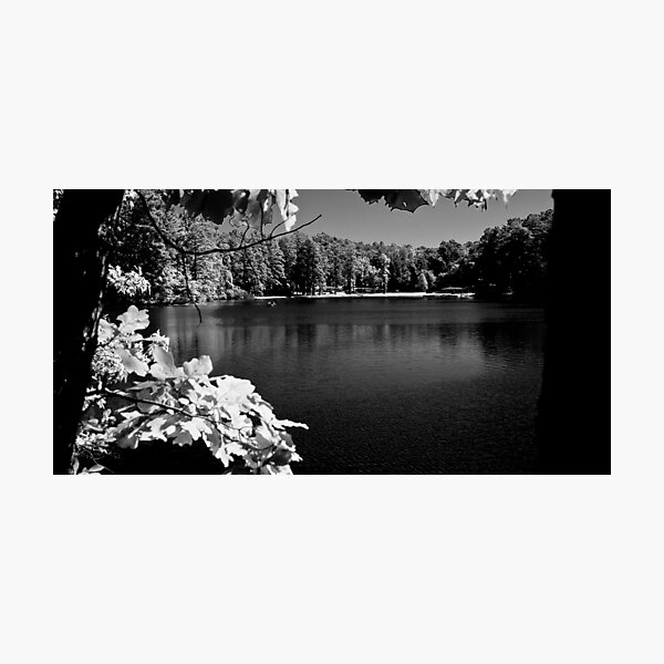 The Old Lake 2 Photographic Print