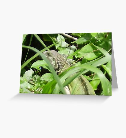 GREEN GRENN Greeting Card