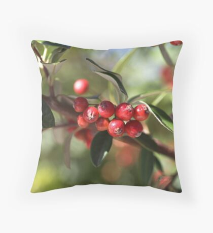 Berry Delight Throw Pillow