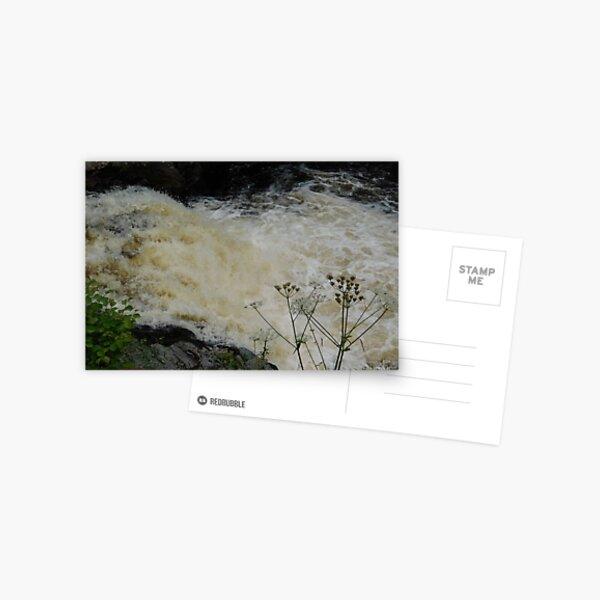 Adrenaline Rush Postcard