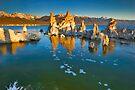 Mono Lake Ca Golden Tufas Wide Angle by photosbyflood