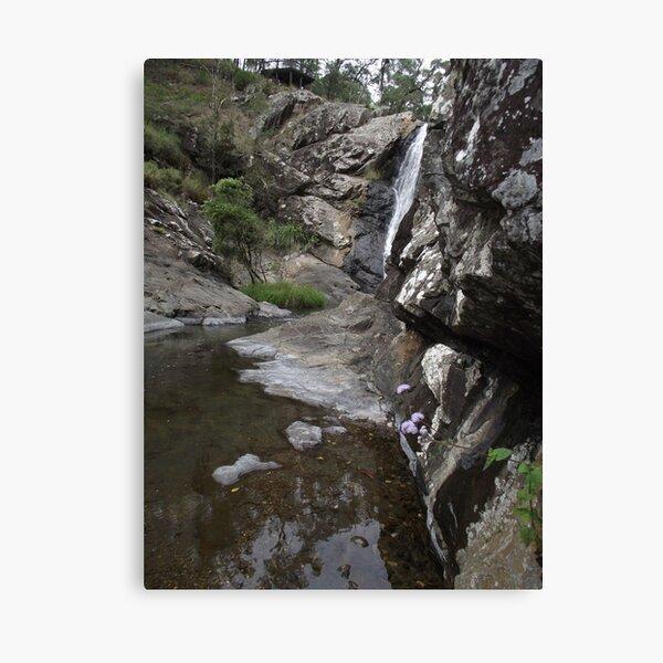 creek beauty Canvas Print
