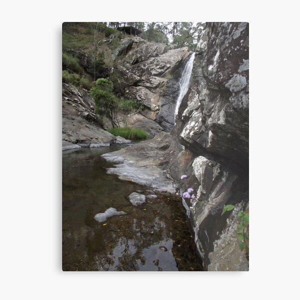 creek beauty Metal Print