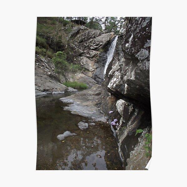 creek beauty Poster