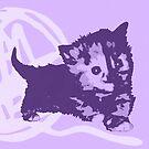 Hier Kitty, Kitty - Pastell Lila | Kätzchen, Katze, Garn, Niedlich, Süß, Liebenswert, Adorbiert, Lila, Ultraviolett, Orange, Sorbett, Lavendel, Rosa, Kaugummi, Grau, Asche, Holzkohle von CanisPicta