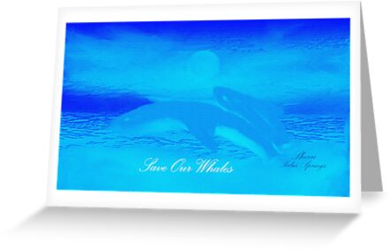 WHALES AND BEAUTIFUL PICTURES AND SOUND, by WHALEGEEK  by ARTIST GINA RUTTLE!! BEAUTIFUL& a wee picture I painted!!!  by Sherri Palm Springs  Nicholas