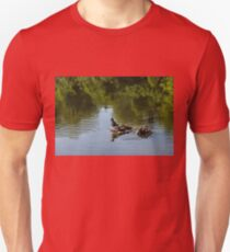 Guarding My Sleeping Family - a Mother Duck and Ducklings on the Pond Unisex T-Shirt