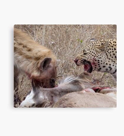 Hyena and Leopard Sharing Meal Canvas Print