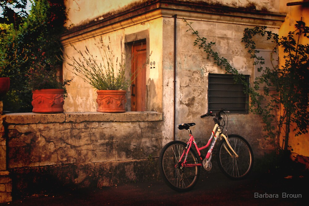 A Day in Tuscany by Barbara  Brown