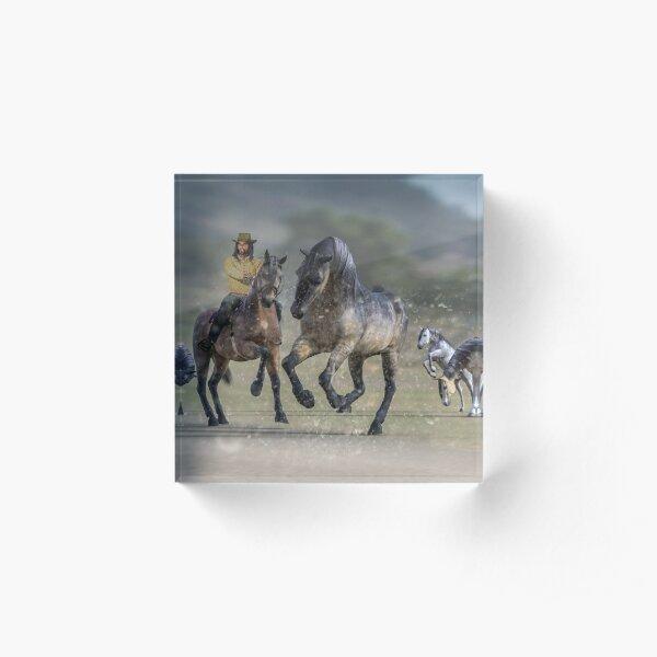 Rider and Horses Acrylic Block
