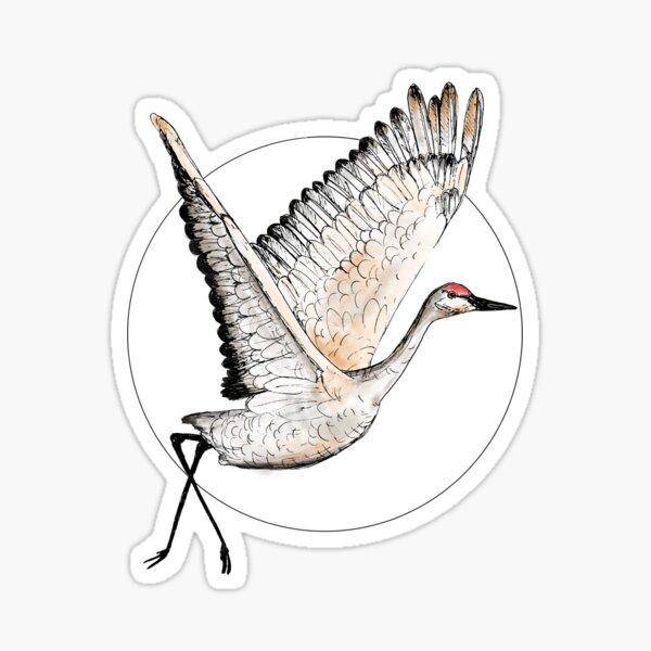 Flying Sandhill Crane Illustration / Crane Bird Drawing / Flying Crane Art Print Sticker