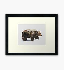 Arctic Grizzly Bear Framed Print