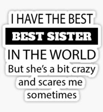 Fun Little Sister Gifts – Perfect Little Sister Birthday Gift – Gifts for Little Sister –  Sticker