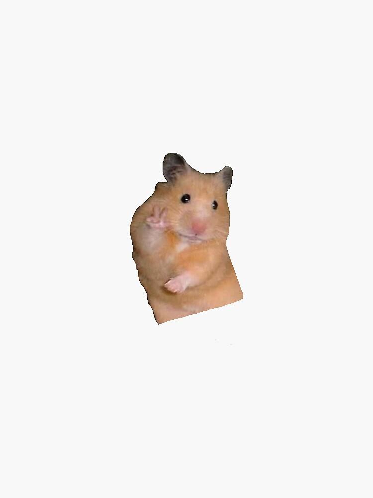 «Hamster Meme» par shelbylickliter