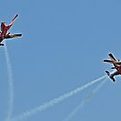 Hope You Know where you're going!  Roulettes action by bazcelt