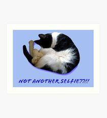 Not Another Selfie??!! - Cat Art Print