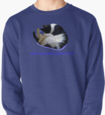 Not Another Selfie??!! - Cat Pullover
