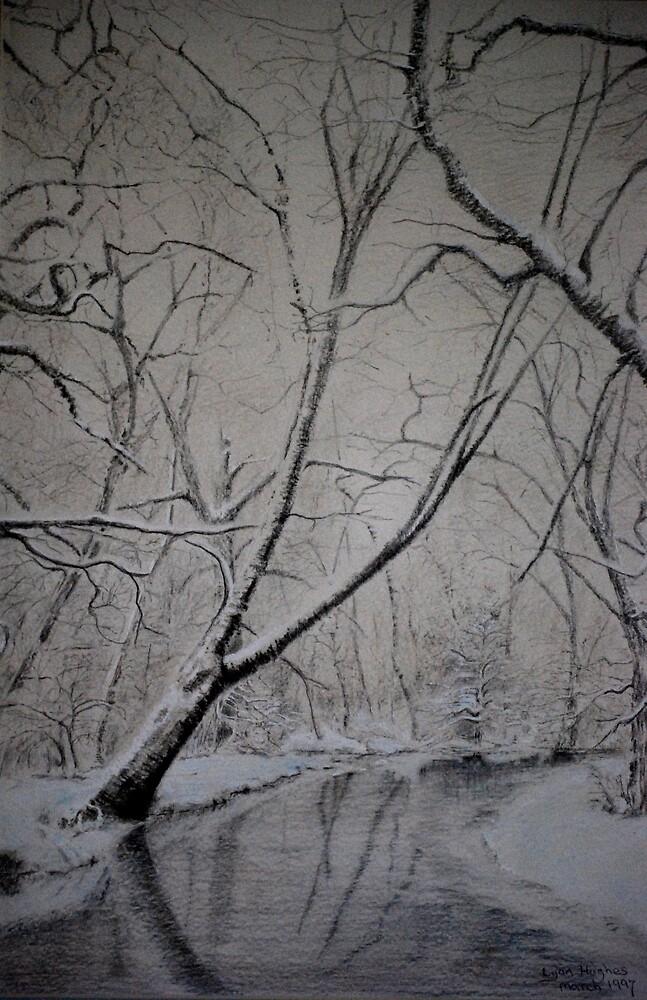 winter Light by Lynn Hughes