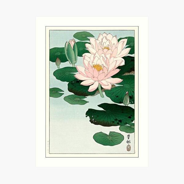 Water Lily by Ohara Koson Art Print
