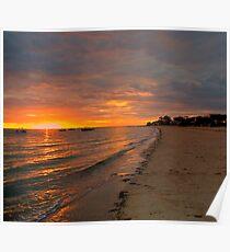 South Australia - Pure Gold - Sunrise Poster