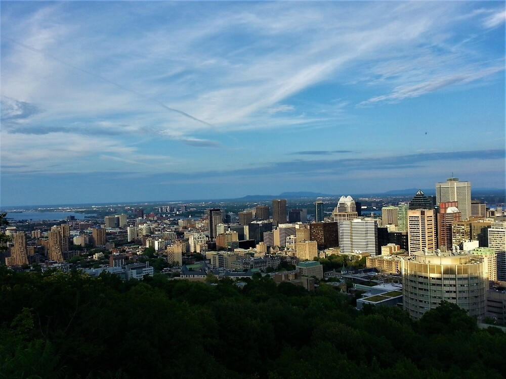 North Downtown Montreal from Mount Royal by tomeoftrovius