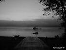 Puget Sound by Marcia Rubin